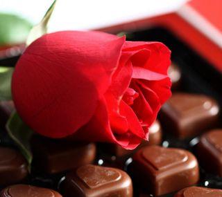 Обои на телефон шоколад, ты, розы, подарок, любовь, красые, день рождения, день, i love you