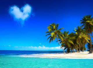 Обои на телефон пальмы, тропические, тропики, синие, прекрасные, пляж, waters, beautiful tropics