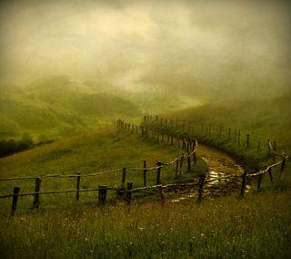 Обои на телефон холмы, страна, туман, путь, луг, зеленые, забор, дорога, the path, rural