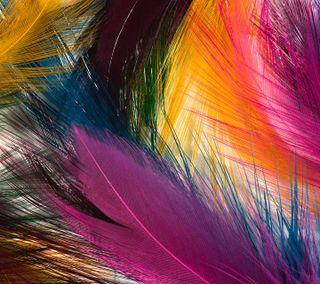 Обои на телефон цветные, приятные, перья, абстрактные