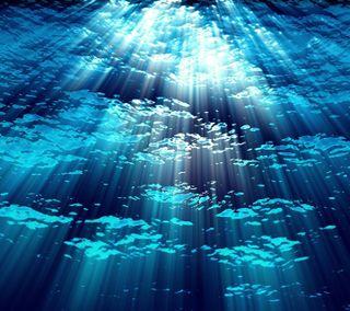 Обои на телефон подводные, синие, океан, море, вода