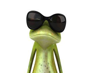 Обои на телефон очки, лягушка, крутые, cool glasses, cool frog