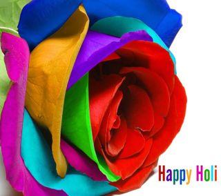 Обои на телефон фестиваль, цветные, холи, счастливые, розы, крутые, красочные, happy holi, color rose, color festival