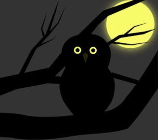Обои на телефон готические, хэллоуин, темные, сова, darkdroid