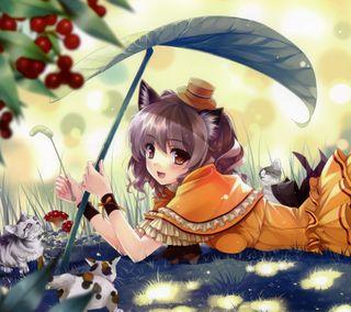 Обои на телефон коты, девушки, аниме, anime girl with cats