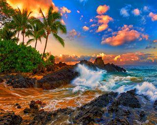 Обои на телефон природа, прекрасные, пальмы, камни, закат, вода, вид, water rocks sunset palms, nature view
