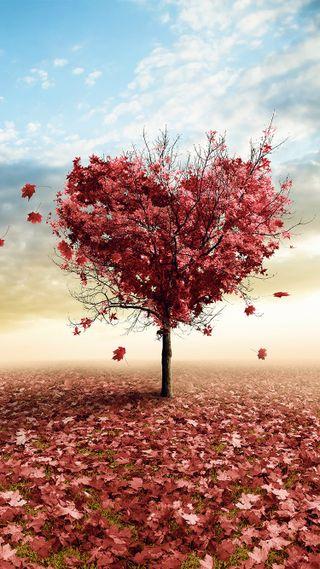 Обои на телефон формы, сердце, любовь, love, heart shape