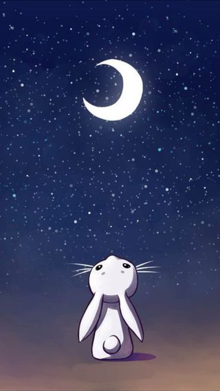 Обои на телефон темы, черные, сеть, ночь, мультфильмы, милые, кролик, звезды, вселенная, hd