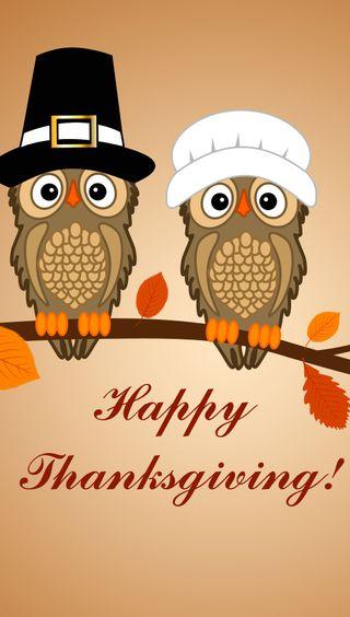 Обои на телефон благодарение, счастливые, сова, осень, листья, hats, happy