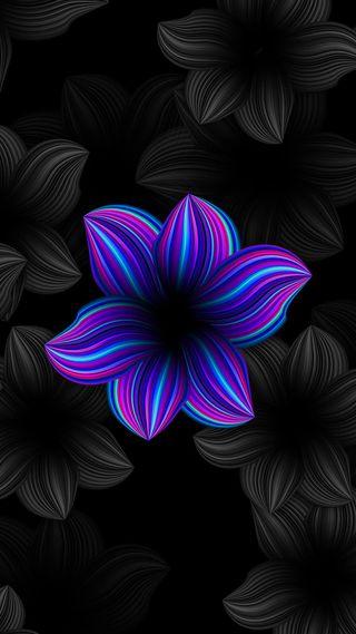 Обои на телефон серые, черные, цветы, фиолетовые, неоновые, красота, абстрактные, s7