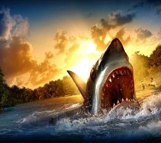 Обои на телефон акула, -----------------