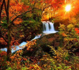 Обои на телефон водопад, приятные, осень, взгляд, autumn waterfall