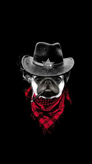 Обои на телефон фан, черные, собаки, смайлики, ковбой, бульдог, sheriff
