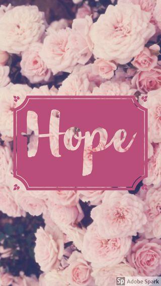 Обои на телефон надежда, цитата, розы