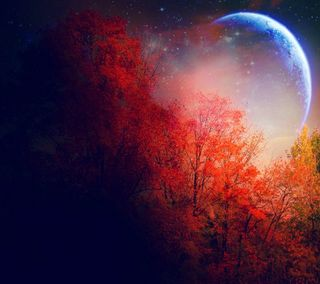 Обои на телефон луна, the moon