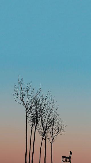 Обои на телефон сцена, простые, синие, небо, закат, деревья, градиент, sunset scene, shilouette, hd