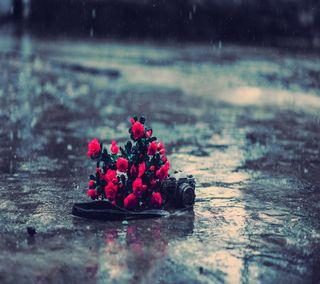 Обои на телефон подарок, чувства, сердце, розы, одиночество, моменты, любовь, дождь, время, love