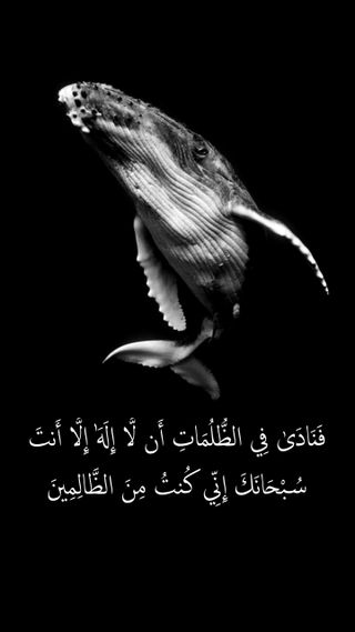 Обои на телефон каран, цитата, темные, рыба, кит, ислам, высказывания, амолед, amoled