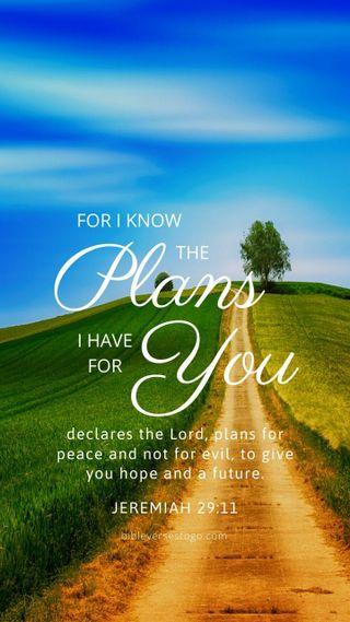 Обои на телефон библия, христианские, природа, бог, verse, plans, jeremiah