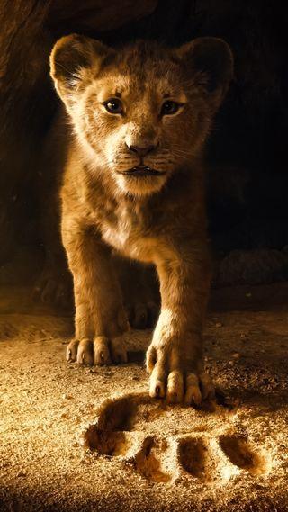 Обои на телефон тигр, маленький, лев, король, дисней, джунгли, pixer, lioness, land, disney