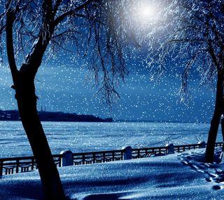 Обои на телефон снежные, релакс, деревья, время