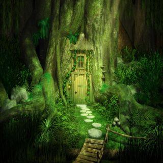 Обои на телефон природа, прекрасные, пейзаж, крутые, зеленые, дом, дерево, tree house, green house