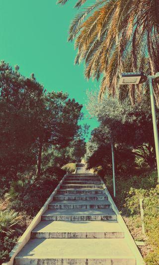 Обои на телефон яркие, синие, лето, лестница, испания, деревья