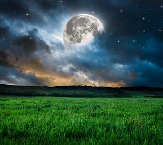 Обои на телефон трава, поле, ночь, лунный, луна, вечер