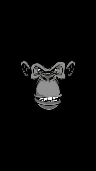 Обои на телефон военно морские, я, тема, плохой, обезьяны, маус, маршрут, логотипы, девушки, us, hacking, bad