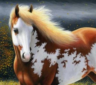 Обои на телефон лошадь, приятные, horse nice wallpaper