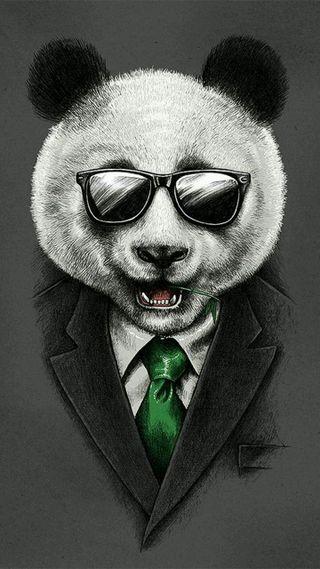 Обои на телефон анимация, медведь, вечеринка, perfect, bear party, bear animation