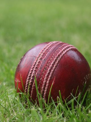 Обои на телефон крикет, сезон, мяч, season ball