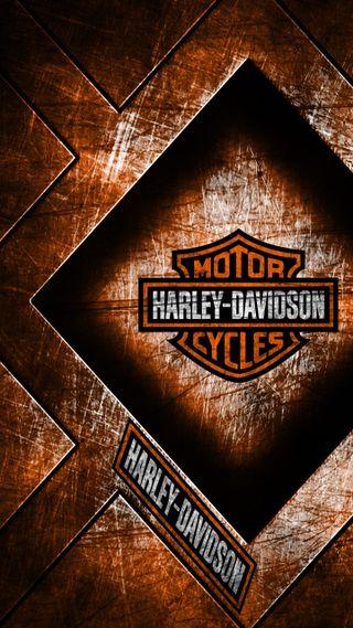 Обои на телефон харли, гонка, рок, оранжевые, мотоциклы, мотивация, дэвидсон, байкер, harley davidson rock