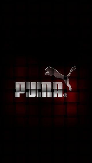 Обои на телефон пума, логотипы, лейблы, бренды, puma