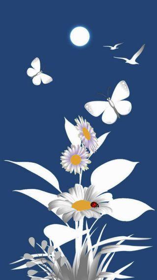 Обои на телефон маргаритка, цветы, природа, лето, дизайн