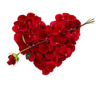Обои на телефон лепестки, сердце, романтика, розы, любовь, petal heart, love