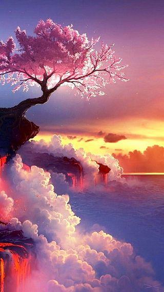 Обои на телефон один, одинокий, закат, дерево, lonely tree