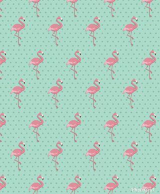 Обои на телефон птицы, шаблон, розовые, flamingos, flamenco