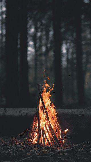 Обои на телефон вампиры, темные, сердце, огонь, лес, король, грустные, башня, fireplace