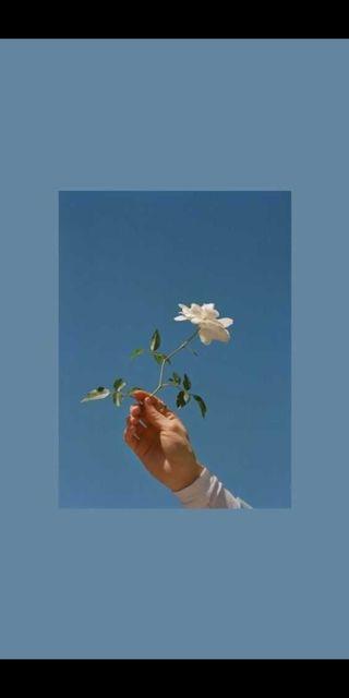 Обои на телефон поэзия, эстетические, цветы, супер, синие, сила, игра, грустные, вайб, holding flower, dropping