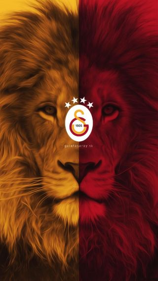 Обои на телефон чемпион, лев, галатасарай, fatih terim