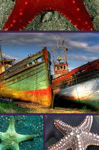 Обои на телефон море, корабли, back to the sea