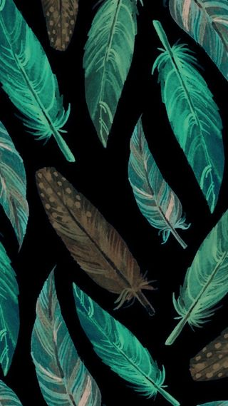 Обои на телефон перья, черные, перо, зеленые