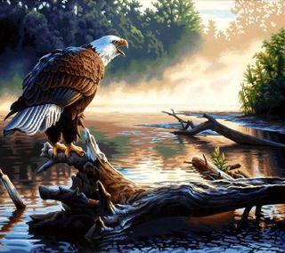 Обои на телефон орел, eagle----------, ----------