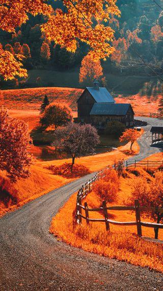 Обои на телефон осень, пейзаж