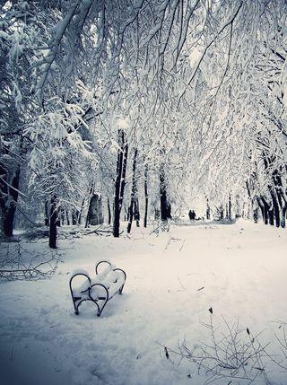Обои на телефон зима, winter tale, 001