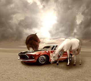 Обои на телефон лошади, машины, mustangs