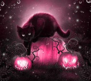 Обои на телефон хэллоуин, котята