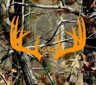 Обои на телефон камуфляж, природа, охота, оранжевые, лес, realtree, lgg3, buck, antlers