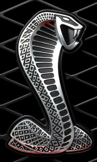 Обои на телефон шелби, форд, приятные, логотипы, крутые, ford shelby logo